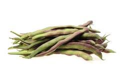 Kidney bean Stock Photography