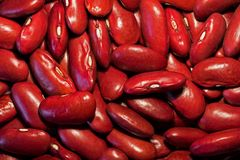 Kidney Beans. Red Kidney Bean Background Royalty Free Stock Photography