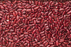 Kidney beans background Royalty Free Stock Photo