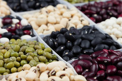 Kidney beans background, assortment haricot - red, black, white, mung in square cells macro. Stock Images