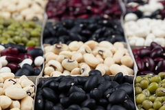 Kidney beans background, assortment haricot - red, black, white, mung in square cells macro. Royalty Free Stock Photo