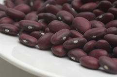 Kidney Beans In A Dish Royalty Free Stock Photo