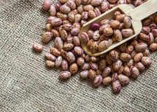 Kidney Beans. The Kidney Beans dried food Royalty Free Stock Photo