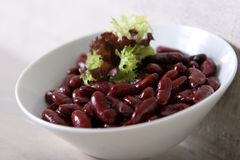 Kidney beans ready to serve Royalty Free Stock Photos