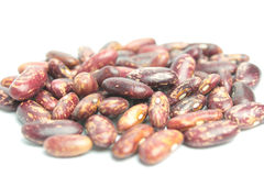 Kidney beans Royalty Free Stock Photo