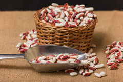 Kidney Beans in a wooden basket Stock Images