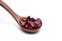 Kidney beans on wooden spoon Royalty Free Stock Photo