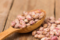 Kidney Beans Royalty Free Stock Images