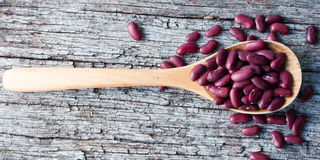 Kidney beans in wooden spoon Stock Photography