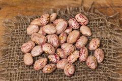 Kidney Beans Stock Photography