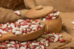 Kidney Beans on a wooden table Stock Images