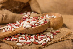 Kidney Beans on a wooden table Royalty Free Stock Photography