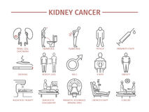 Kidney Cancer Symptoms. Royalty Free Stock Images