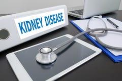 KIDNEY DISEASE Stock Image