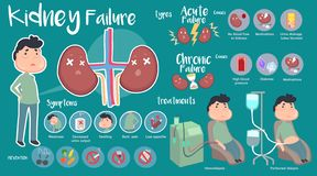 Kidney Failure infographic. Cute info graphic of Kidney Failure royalty free illustration