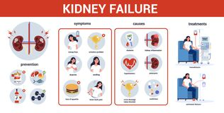 Kidney failure infographic. Symptoms, causes, prevention and treatment.
