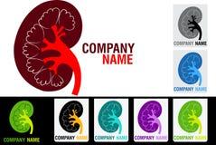 Kidney logo Stock Images