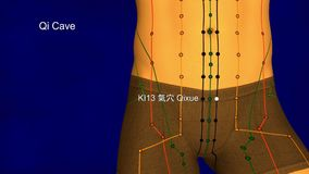 Kidney Meridian, video, 3D Illustration stock video