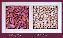 Kidney Red bean and Chick Pea Royalty Free Stock Images
