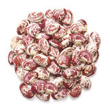 Kidney roman bean isolated on white background Royalty Free Stock Photos