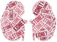 Kidney stones. Stock Photography