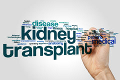 Kidney transplant word cloud. Concept on grey background stock photo