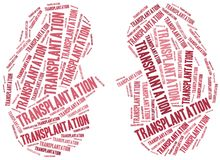 Kidney transplantation. Word cloud illustration. Royalty Free Stock Photo