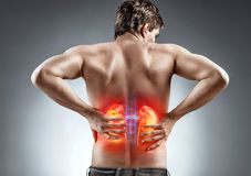 Man holding his back. Kidneys pain. Man holding his back. Medical concept Stock Image