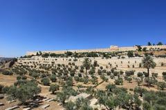Kidron Valley Golden Gate, Jerusalem väggar Royaltyfri Bild