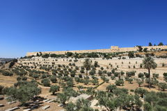 Kidron Valley, Golden Gate, Jerusalem Walls. View of the Kidron Valley (or Valley of Josaphat or King's Valley) and of the eastern walls of the Old City of Royalty Free Stock Image