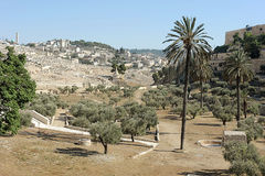 Kidron Valley and Mount of Olives. The holy places of the three religions in Israel - Kidron Valley and the Mount of Olives Royalty Free Stock Photos
