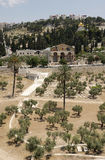 Kidron Valley and the Mount of Olives Royalty Free Stock Images