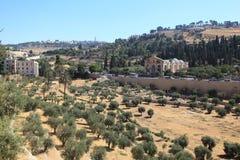 Kidronet Valley i Jerusalem, Israel Royaltyfria Foton