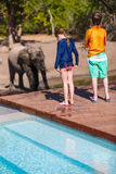 Kids in Africa. Kids on African safari vacation enjoying wildlife viewing standing near swimming pool stock images