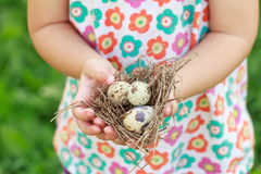 Kids arms holding nest with eggs Royalty Free Stock Image