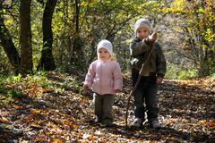 Kids in autumn forest Stock Image