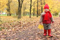 Kids in autumn park with pumpkin. Around fall leaves Royalty Free Stock Photography