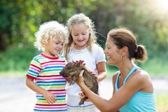 Kids with baby pig animal. Children at farm or zoo. Kids play with farm animals. Child feeding domestic animal. Mother, little boy and girl hold wild boar baby stock photo