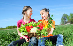 Kids with basket of vegetables. Two little girls with basket of vegetables outdoor Stock Photography