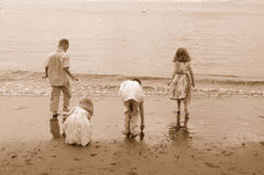 Kids At The Beach 2. Kids playing at Esquimalt lagoon royalty free stock image