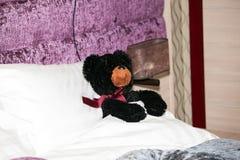 Kids bear toy Royalty Free Stock Image