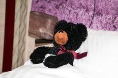 Kids bear toy Royalty Free Stock Photo