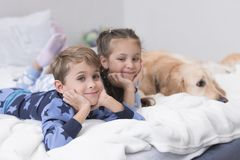 kids on bed with dog stock photo
