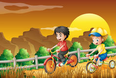 Kids Biking At The Woods Stock Images