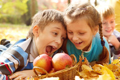 Kids biting autumnal apples. Hungry kids biting autumnal apples Royalty Free Stock Photo