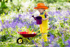 Kids in bluebell garden royalty free stock photography