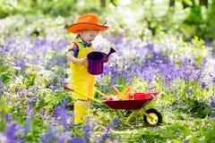 Kids in bluebell garden Stock Image