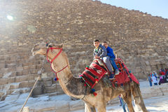 Kids on camel in Giza Pyramids Royalty Free Stock Photography