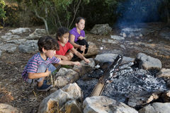 Kids at campfire. Three kids roasting marshmallows at a campfire royalty free stock image