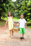 Kids carrying basket of apples Stock Image